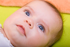 Baby 15 Stock Image