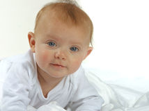Baby. A baby in white on a white background Stock Images