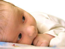 Baby 2. Two month child Royalty Free Stock Photography