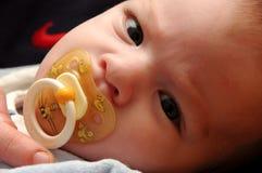 Baby. Stock Photo