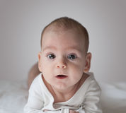 Baby. Little Baby Boy 0-6 months Stock Image