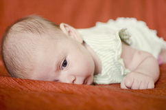 Baby. Beautiful four weeks old baby girl laying on her tummy Stock Photography