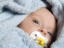 Baby Stock Image