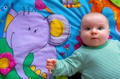 Baby. Colorful portrait of happy baby Royalty Free Stock Images