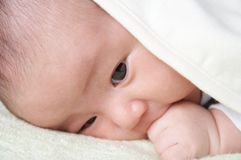 Baby. A baby covered by a white towel Stock Image