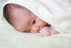 Baby. A baby covered by a white towel Royalty Free Stock Photography