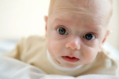 Baby. A small baby walking in his bed stock images