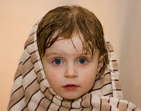 Baby. A beautiful baby wrapped in a furry blanket Royalty Free Stock Image