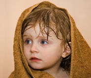 Baby. A beautiful baby wrapped in a furry blanket Stock Photography