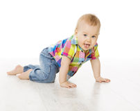 Baby Activity, Crawling Little Child Boy Dressed Jeans Color Shirt, Active Kid. Isolated over White Background royalty free stock image