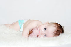 Baby age of 4 months lying on fur plaid Royalty Free Stock Photo