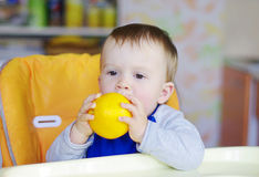 Baby age of 1 year bites orange Stock Image