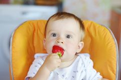 Baby age of 1 year tastes strawberry Stock Images