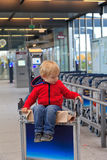 Baby in the airport. Baby in trolley in the airport Stock Image
