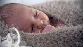 Baby all covered up in brown warm woollen cover