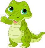 Baby  alligator. Illustration of very cute baby alligator Royalty Free Stock Image