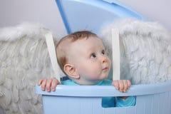 Baby angel Stock Photos