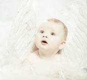 Baby angel Royalty Free Stock Photo