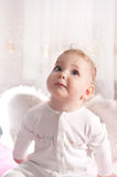 Baby angel Royalty Free Stock Photos