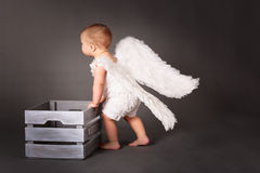 Baby angel dragging box with  winter, Royalty Free Stock Photos