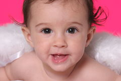 Baby with angel wings Stock Images