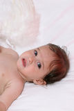 Baby with angel wings Stock Photos