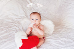 Baby Angel with Wings and feather Stock Photography