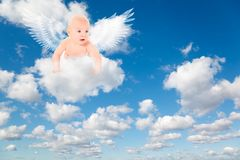 Baby with angels wings on clouds Stock Images
