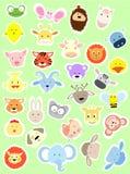 Baby animal face frame Royalty Free Stock Image