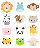 Baby Animal Faces. Illustration of baby animal faces set Stock Photo