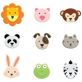 Baby Animal Faces Royalty Free Stock Photography