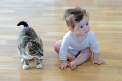 Baby with animal. Baby (girl age 06 months)  sits with animal (domestic cat) at home. Concept photo animals and children Stock Photography