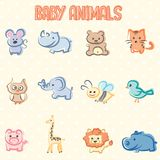 Baby animals Royalty Free Stock Photos