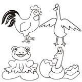 Baby animals - coloring. Kohout, goose, frog and snake - coloring pages for kids Royalty Free Stock Photo