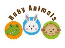 Baby animals design Royalty Free Stock Photo
