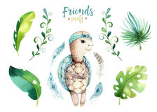 Baby animals nursery isolated illustration for children. Watercolor boho tropical drawing, child cute tropic turtle royalty free stock photos
