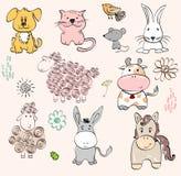 Baby animals Stock Photos