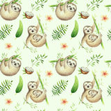 Baby animals sloth nursery isolated seamless pattern painting. Watercolor boho tropical drawing, child tropical drawing. Baby animals sloth nursery isolated Royalty Free Stock Photography