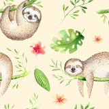 Baby animals sloth nursery isolated seamless pattern painting. Watercolor boho tropical drawing, child tropical drawing Stock Photo