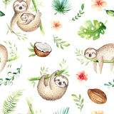 Baby animals sloth nursery isolated seamless pattern painting. Watercolor boho tropical drawing, child tropical drawing Stock Image
