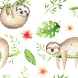 Baby animals sloth nursery isolated seamless pattern painting. Watercolor boho tropical drawing, child tropical drawing Stock Images
