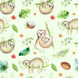 Baby animals sloth nursery isolated seamless pattern painting. Watercolor boho tropical drawing, child tropical drawing Royalty Free Stock Photo