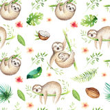 Baby animals sloth nursery  seamless pattern painting. Watercolor boho tropical drawing, child tropical drawing Royalty Free Stock Images