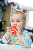 Baby with an apple at home; vertical. Baby eating an apple at home; vertical Stock Image