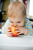 Baby with an apple at home; vertical. Baby eating an apple at home; vertical Royalty Free Stock Image