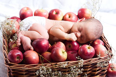 Baby in apples Stock Image