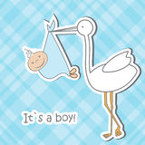 Baby arrival card with stork that brings a cute Royalty Free Stock Photography