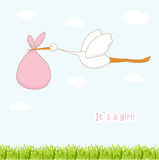 Baby arrival card with stork that brings a cute. Girl Stock Images