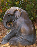 Baby Asian elephant sitting on the ground Stock Photo