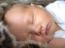 Baby asleep on fur blanket Royalty Free Stock Image